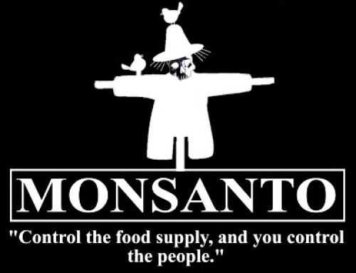 Monsanto to Keep Selling Pesticide-Coated Seeds EPA Says Don't Help Yields ― And May Harm Bees